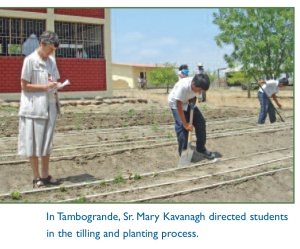 Tilling and Planting Process