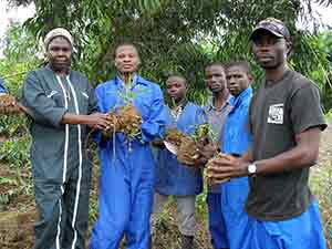 Sr. Claudine teaches the farmers in the Democratic Republic of Congo principles of sustainable farming.