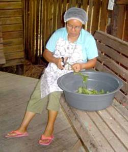 Sister-Socorro-preparing-material-for-home-medicines