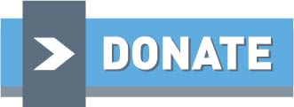 Blue Donate Now button